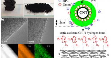 纳米碳与离子液体主客体型催化材料研究新进展